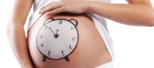 Календарь беременности. Третий триместр